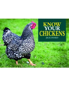 Know_Your_Chickens 1