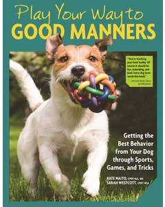 Play_Your_Way_to_Good_Manners 1