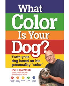 What_Color_Is_Your_Dog_0
