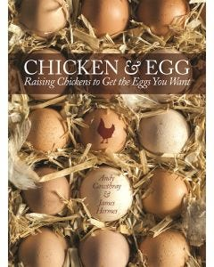 Chicken_and_Egg_0