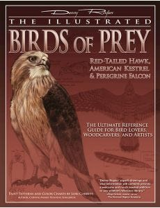 Illustrated_Birds_of_Prey_Red-Tailed_Hawk_American_Kestral_&_Peregrine_Falcon_0