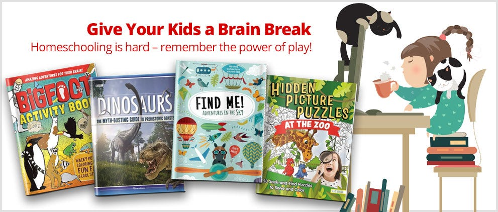 Give Your Kids a Brain Break  Homeschooling is hard – remember the power of play!