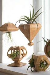 Scroll Saw Compound-Cut Air Plant Holders
